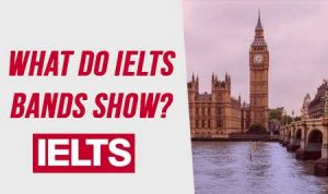what-do-ielts-bands-show
