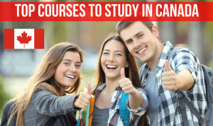 top-courses-to-study-in-canada
